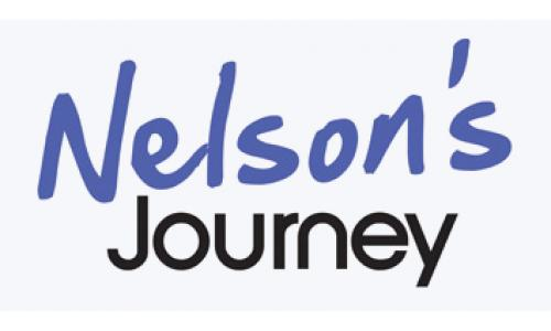 nelson journey logo small